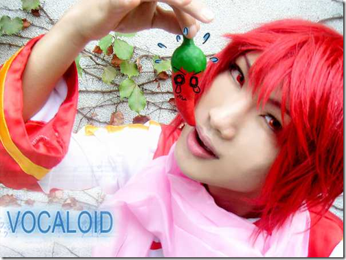 vocaloid cosplay - akaito by zaki