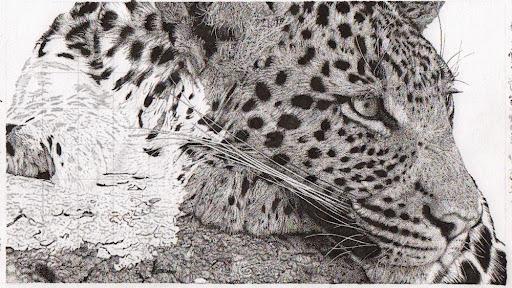 leopard-2015-01-17-16-53.jpg