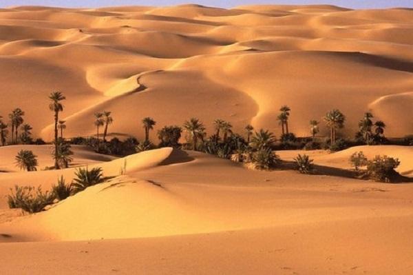 Ảnh bãi cát vàng đẹp nhất