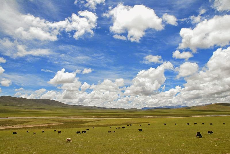 Tibet landscape by Luo Shaoyang from Beijing, China (Tibet) [CC BY 2.0 (http://creativecommons.org/licenses/by/2.0)], via Wikimedia Commons