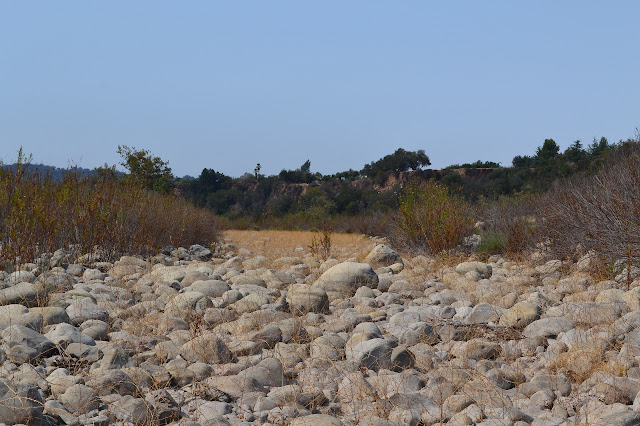 the Ventura River, bone dry