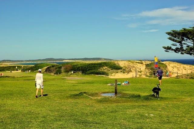 Sydney's Dog Beach