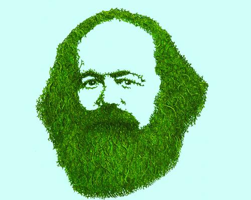 Resultado de imagem para ecologia ambiental