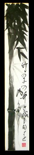 竹の子の竹と成る日を風多し