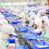 Đơn hàng chế biến thủy sản cần 9 nam thực tập sinh làm việc tại Hiroshima, Nhật Bản tháng 05/2016