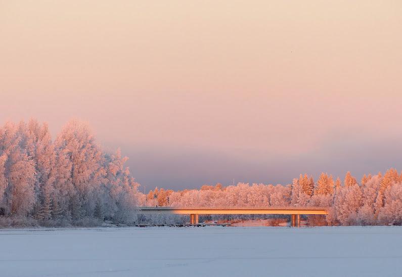 erkolansilta+oulujoki+rose+givre+083.JPG