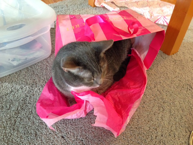 bag kitty