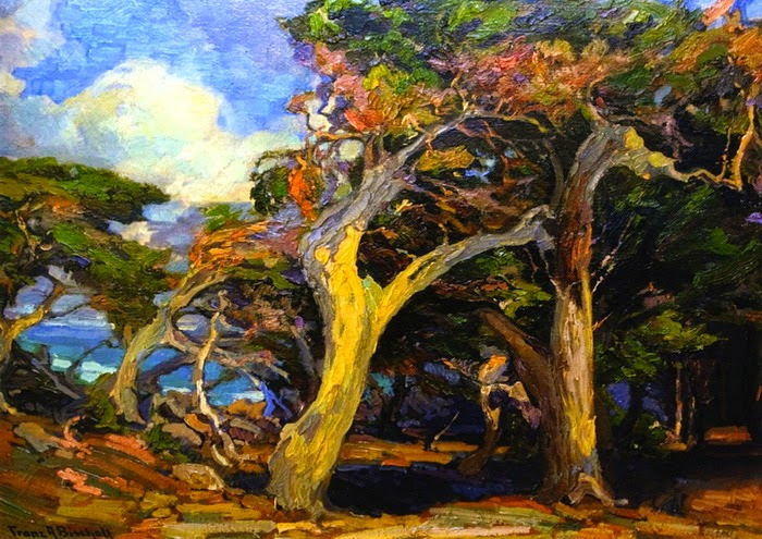 Franz Bischoff - Windswept Twisted Cypress