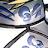 Araragi Kagaku avatar image