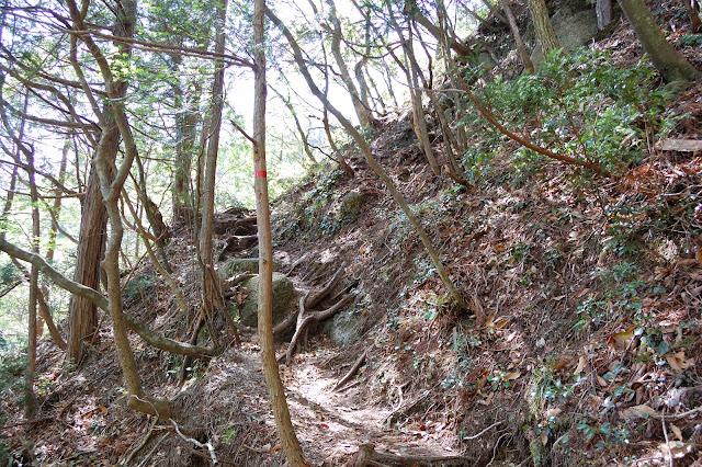 三ツ谷登山道