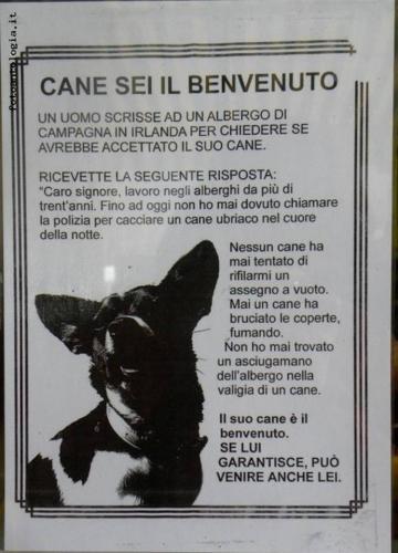 cane sei il benvenuto