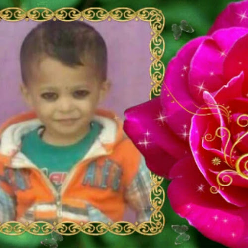 rajveer Profile Photo