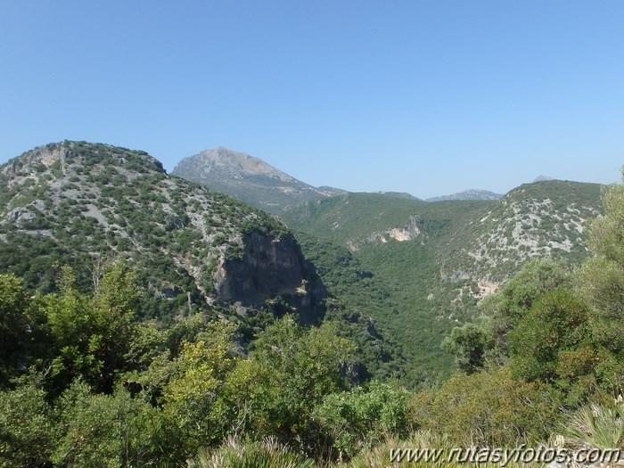 Barranco de la Garganta Verde (II)