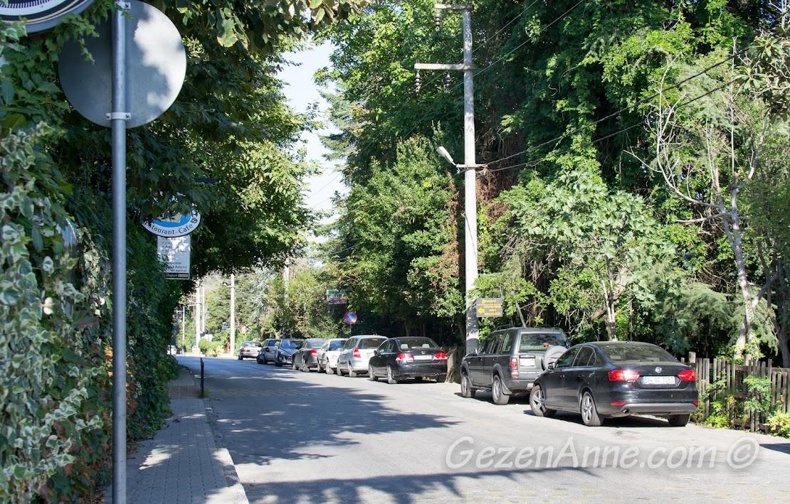 Polonezköy'ün girişindeki yol