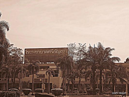 Srithanya Hospital