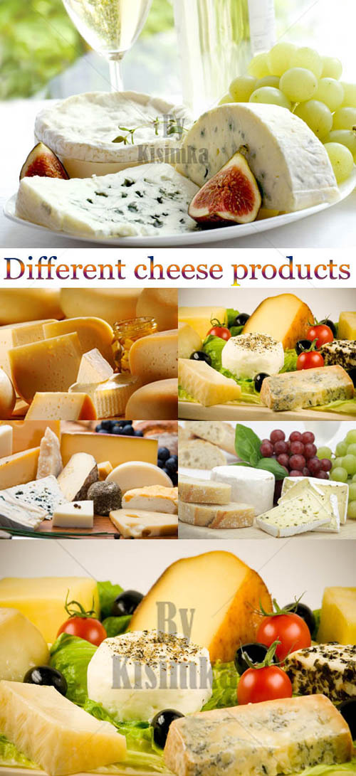 Stock Photo: Different cheese products