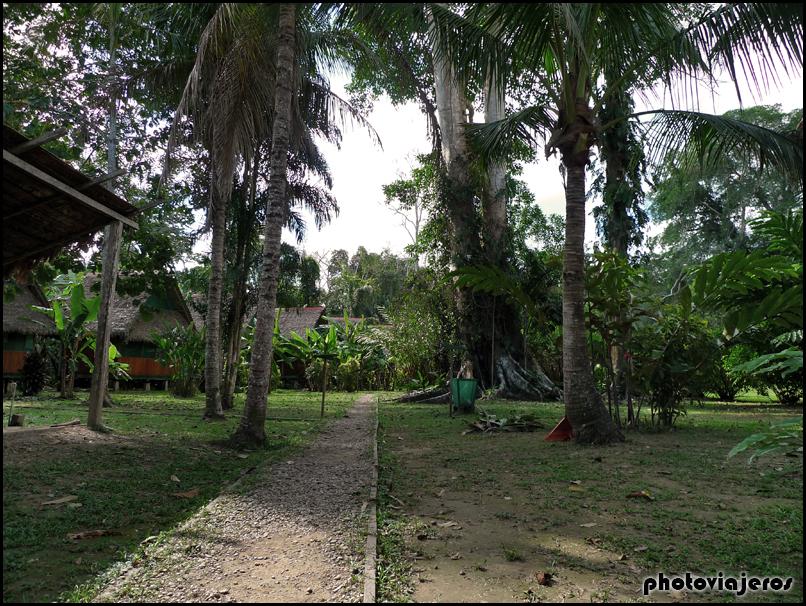 Tambopata