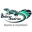 Bebesaurus