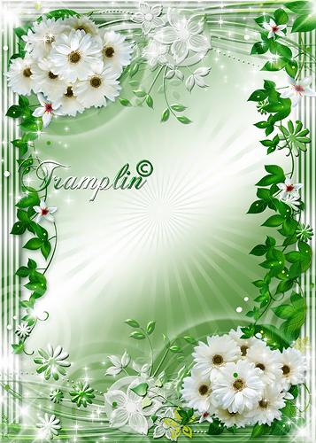 Рамка  для Photoshop  –  В белоснежно цветущий рай
