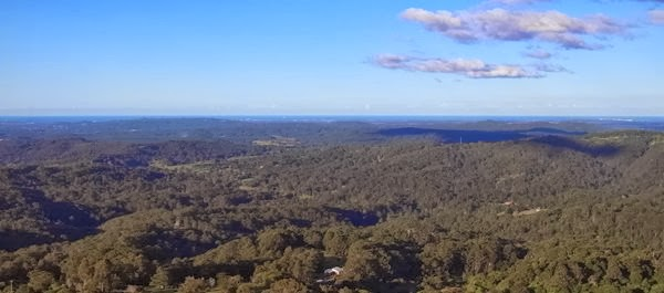 Sunshine Coast Hinterland - Queensland