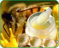 sua ong chua nguyen chat gia bao nhieu