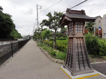 <br /> 保土ヶ谷宿の松並木と一里塚 旧東海道五十三次