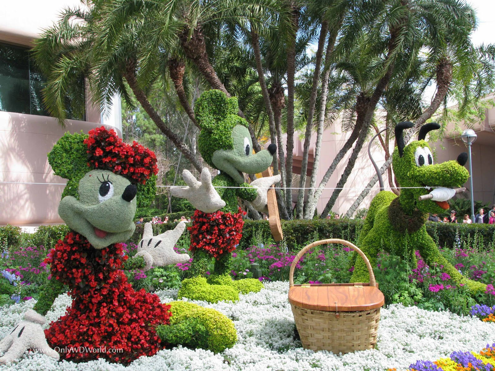 Disney World Blossoms During The 2011 Epcot International Flower And Garden Festival Disney