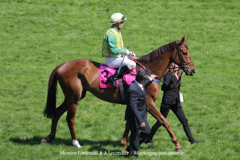 Photos Auteuil 17-05-2015 Journée du Grand Steeple IMG_0172