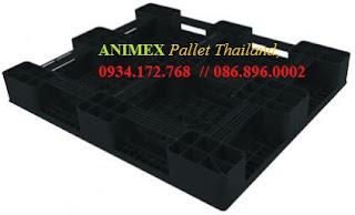 Pallet nhựa Medium Thái Lan nhập khẩu