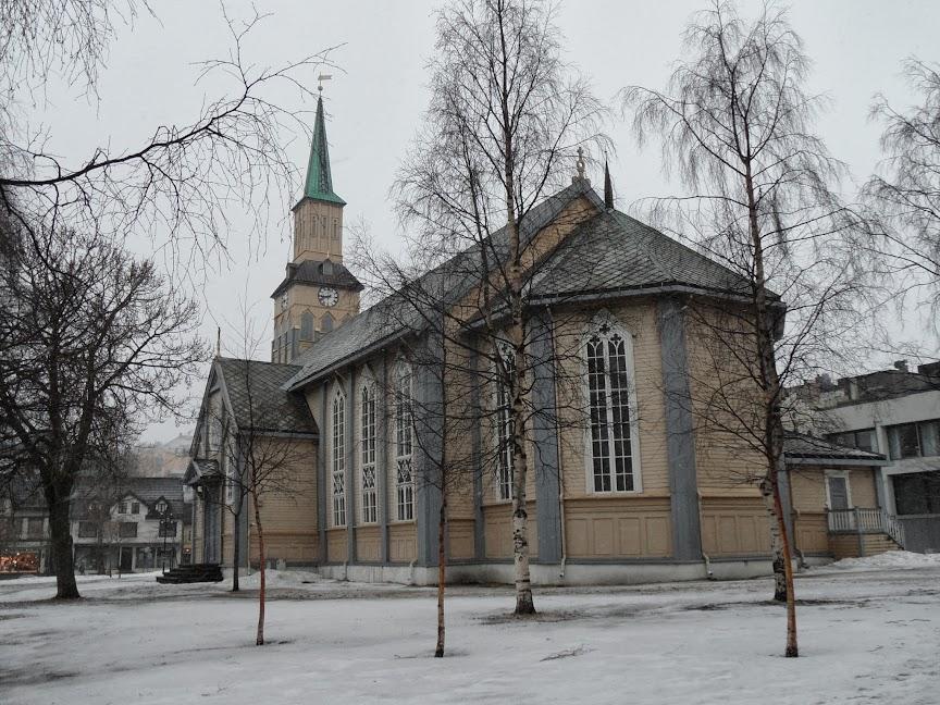 Norvège mars 2014 SAM_1640