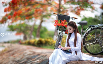 Cánh hoa phượng buồn- Nhật Quang