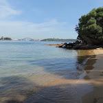 Tingara Beach (253781)