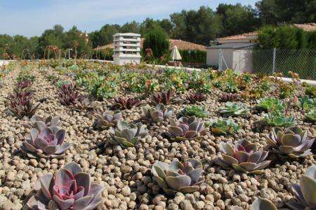 Cubiertas vegetales