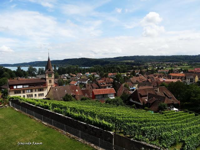 passeando - Passeando pela Suíça - 2012 - Página 14 DSC05249