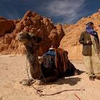 Велотур на Синай в декабре 2011