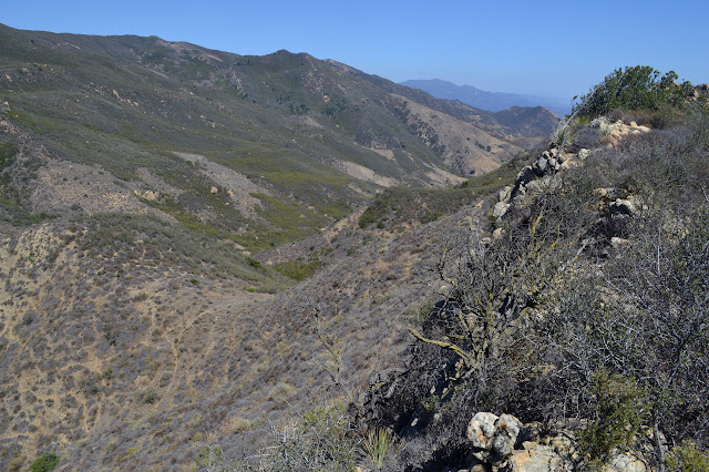 looking down the strike canyon from above now