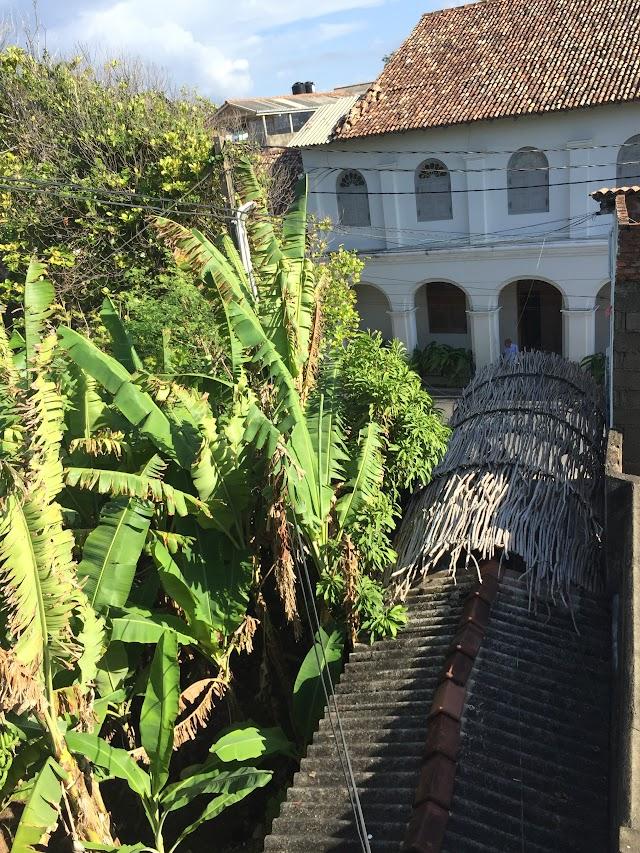 Secret Garden Fort