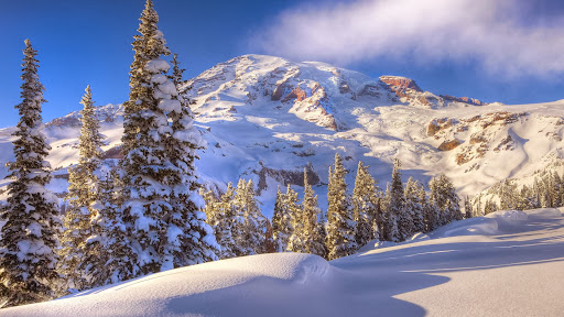 Winter Dreams, Paradise Area, Mount Rainier National Park, Washington.jpg