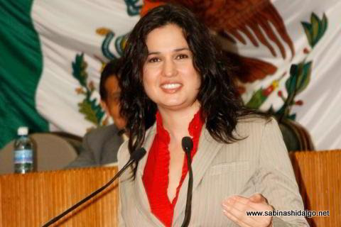 Diputada Martha de los Santos González