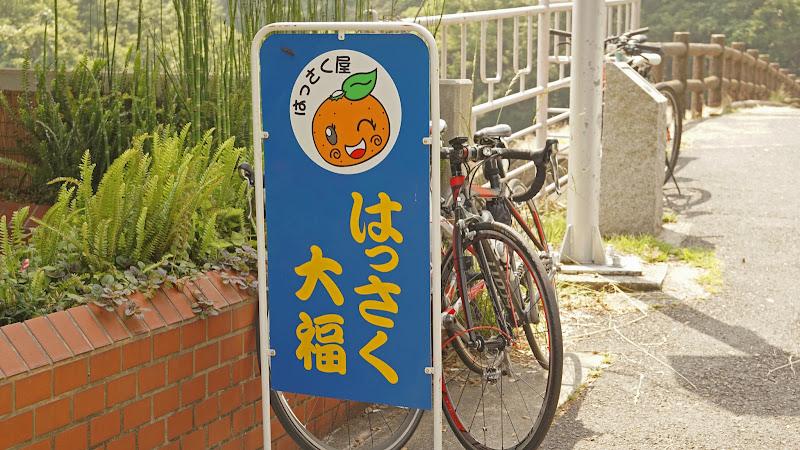 しまなみ海道 はっさく大福 写真1