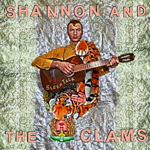 Shannon And The Clams - Sleep Talk