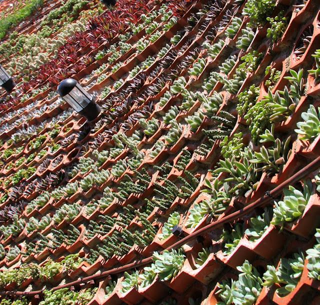 Vertical gardens jardines verticales murs verts for Riego jardin vertical