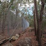 Following the fenceline (117241)