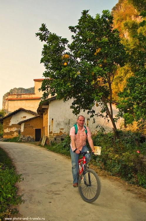 Отдых в Китае дикарями. Путешествие в поселок Яншо. Велопрогулка. Видели хоть раз, как растет заморский фрукт Помело?