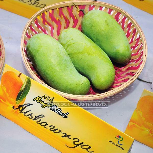 Aishwarya mango at the 26th Mango Festival, organised by Delhi Tourism at Dilli Haat, Pitampura, Delhi.