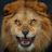 N' Rasser avatar image