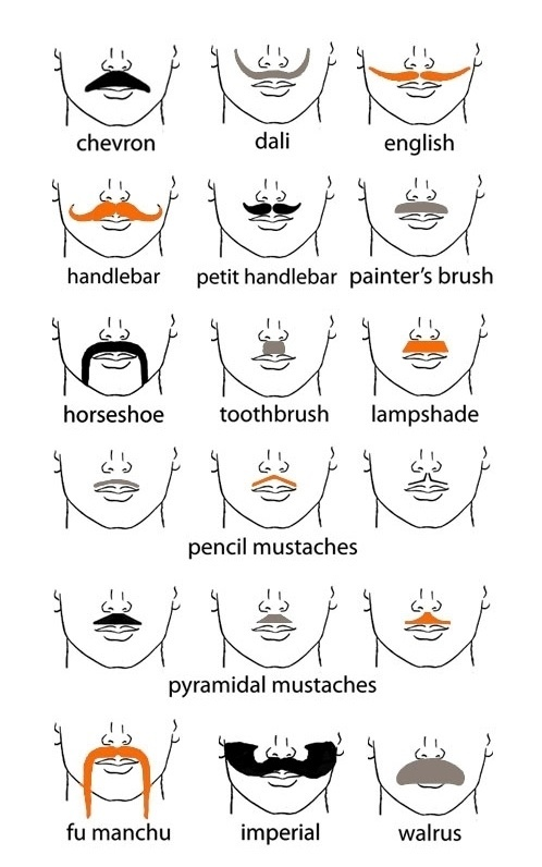 Types Of Mustache