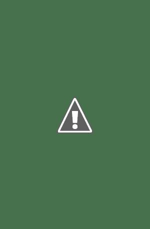 Plantilla para página de periódico, formato InDesign, para crónica literaria y críticas de libros