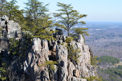 Crowders Mountain