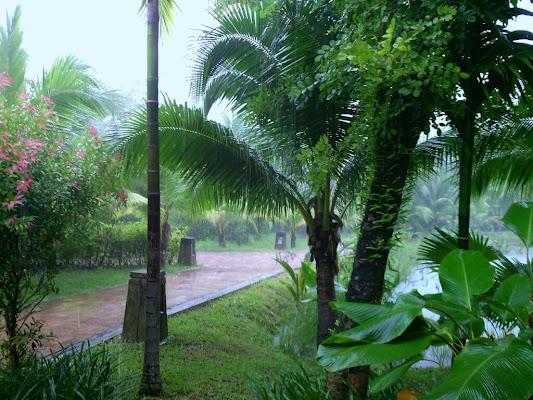 Khao Lak Laguna Resort เขาหลักลากูน่า รีสอร์ท